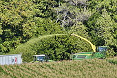 Mowing but to make silage, Brognard, Doubs, France