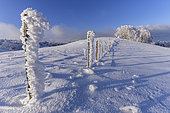 The crests of the Jura in winter, Massif du Grand Colombier, Southern Jura, France