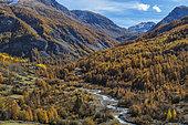 The Bachelard valley in autumn, at the bottom the Col de la Cayolle, Haute Ubaye, Alpes de Haute Provence, France