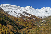 The Haute Ubaye in autumn. Hamlet of Le Serre, under the Vars pass, Alpes de Haute Provence, France
