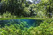 Vue mi-air mi-eau de la source du Durzon, en amont de la commune de Nant, Aveyron, Occitanie, France