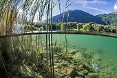 Vue mi-air mi-eau du lac de Valbonnais, dans la Matheysine, Isère, Auvergne Rhône Alpes, France