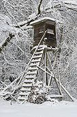 Hunting blind in winter, Hesse, Germany, Europe