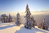Bernese Alps, view from Niederhorn, Switzerland, Europe