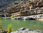 Clear water in Wadi Dam, Hajar al Gharbi Mountains, Al Dhahirah Region, Arabia, Middle East, Oman, Asia