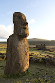 Isolated Moaï, Ahu Tongariki, site of 15 upright Moaï. Rapa Nui, Easter Island, Chile