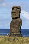 Tahaï, Moaï isolated in front of the sea, Rapa Nui, Easter Island, Chile