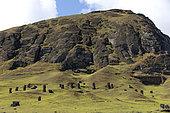 Rano Raraku, Moaï Quarry, Easter Island, Chile