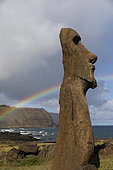Ahu Tongariki, 15 Moaï upright. Rapa Nui, Easter Island, Chile