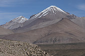 Landscape of the Altiplano at 4200 m altitude, Chile