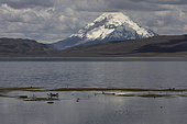Mountain lake at 4500 m, Altiplano & puna, Chile