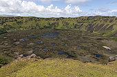 Rano Kau Volcano Crater, Rapa Nui, Easter Island, Chile