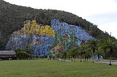 Mural de la Prehistoria, painted fresco (180m sideways and 120m high) on a cliff at the request of Fidel Castro in the 1960s, Viñales Valley, Cuba