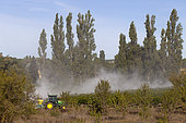 Pesticide spraying on a vineyard, Vaucluse, Provence, France