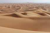 Dunes in the desert of deserts. Desert Rub al Khali Dubai, United Arab Emirates