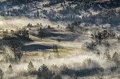 Brouillard d'hiver en Haute Provence. Robine sur Galabre, Réserve Géologique de Digne, Alpes de Haute Provence, France