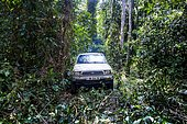 Car driving through the wild roads of the Unesco world heritage sight Dzanga-Sangha Special Reserve, Central African Republic, Africa