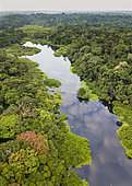 Aerial view of Congo rainforest and river, Akaka, Loango National Park, Gabon.