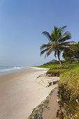 Sandy beach along the Atlantic coast, near Omboue, Gabon, central Africa.