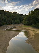 Loder Valley Nature Reserve during dry spell, Ardingly reservoir, West Sussex, UK