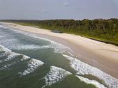 Beach and rainforest, near Omboue, Gabon, central Africa
