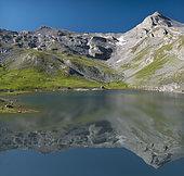 Lac de Vens, Mercantour National Park, Alps, France