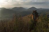 'Mushroom' rocky piton in Vosges du Nord sandstone, Vosges du Nord Regional Nature Park, France