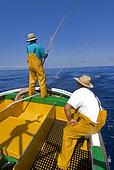 Artisanal and selective tuna fishing. Atlantic Ocean, Makaronesia. Island of Tenerife. Canary Islands.