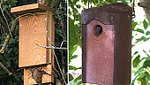Various means of pest control: Left: bat nesting box, handmade. On the right: bird box made of reconstituted stone. (Spain)