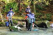 Electric fishing on the Guiers, labeled wild river, Parc Naturel Régional de Chartreuse, Alpes, France