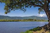 Cratère du Ngorongoro, zone de conservation du Ngorongoro, Serengeti, Tanzanie.