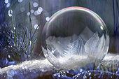 Frozen soap bubble by - 10°