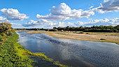 La Loire en amont vue du pont de Pouilly sur Loire, Val de Loire, France