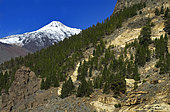 Teide National Park, World Heritage Site, Tenerife. Volcano, Snowy Mount Teide. Canary Islands.