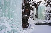 Abisko National Park, Sweden.