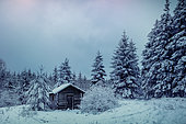 Hunting lodge in a snowy forest, Ardennes, Belgium