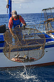 Professional fishing sector. Artisanal fishing with cages for fish. Tenerife, Canary Islands. Atlantic Ocean, Macaronesia.