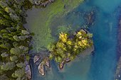 Aerial view, small island from above, evening mood at lake Hafslovatnet, Hafslo, Vestland, Norway, Europe