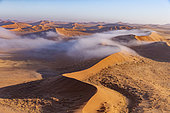Sossusvlei dunes, with mist, Namib Erg listed as UNESCO World Heritage, Namib-Naukluft National Park, Namib Desert, Hardap region, Namibia
