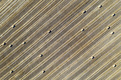 Bales of straw and abstract patterns in cornfield after wheat harvest. In the Campiña Cordobesa, the fertile rural area south of the town of Córdoba. Aerial view. Drone shot. Córdoba province, Andalusia, Spain.