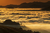 Sea of clouds at daybreak, Orgambideska pass, Pyrénées-Atlantiques, France