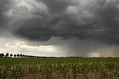 Spring thunderstorms in the Eurelian region. Numerous thunderstorms developed in the evening of June 3rd in the south of Eure et Loir. This storm developed over Bonneval. Centre-Val de Loire, France