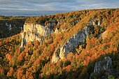 Limestone rock with mixed forest in autumn colours, Danube valley, Bandfelsen, Leibertingen, Upper Danube nature park Park, Baden-Württemberg, Germany, Europe