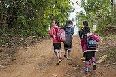 Pupils on the way to school, Luang Prabang, Laos, Asia