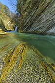 The Cheran gorges, in the Bauges massif. The Cheran, a wild river in the Bauges, has carved gorges in the soft mollassic sandstone deposited in the Tertiary period. Savoie, PNR des Bauges, France