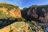 The Blavet gorges, a famous site in the Esterel Massif. A protected massif of volcanic origin dating from the Permian period (primary era) and formed of rhyolites (porphyry) with brilliant colours under the setting sun. Var, France