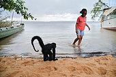 Jeune singe atèle ou singe araignée noir (Ateles paniscus) au bord de l'eau sur une plage avec fillette en Guyane Française