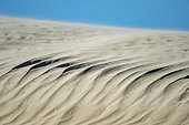Sand dune in channels between San Carlos and La Florida BCS Mexico