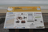 Information panel on gathering seafood by hand in Saint-Aubin-sur-Mer, Seine-Maritime, Normandy, France