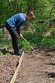 Covering seeds with a rake, Sowing in the open ground, Permaculture sowing